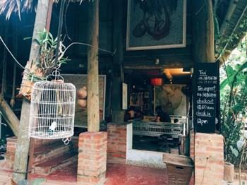 """Homestay """"độc nhất vô nhị""""  ở Hà Nội, trải nghiệm 'sống trên cây'"""