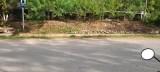 Bán đất mặt đường QL 43 đường đi Lóng Sập Mộc Châu giá đầu tư lợi